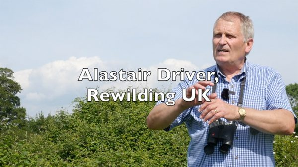 Alistair Driver